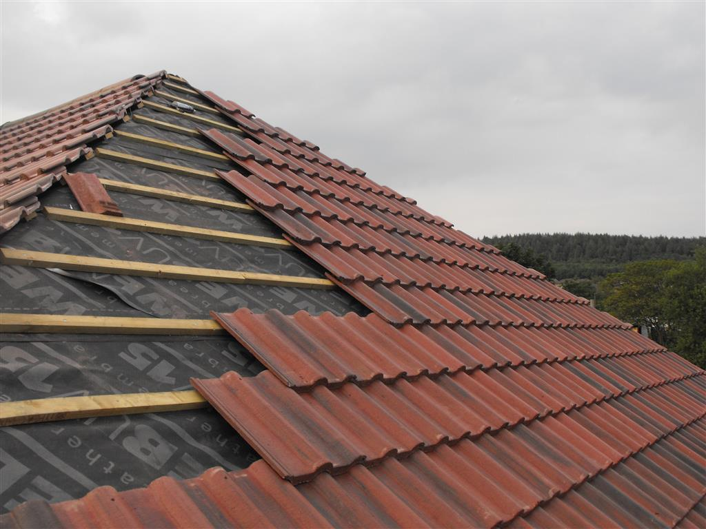Roof Care and Maintenance Tips